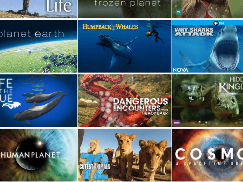 Exploring the Planet with the Netflix Passport + Free Download